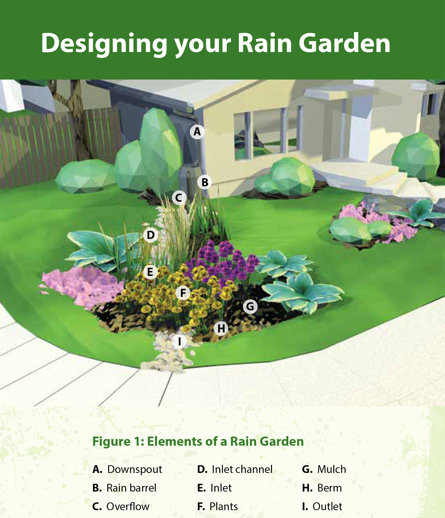 Rain Gardens A How To Guide For A Healthy Yard