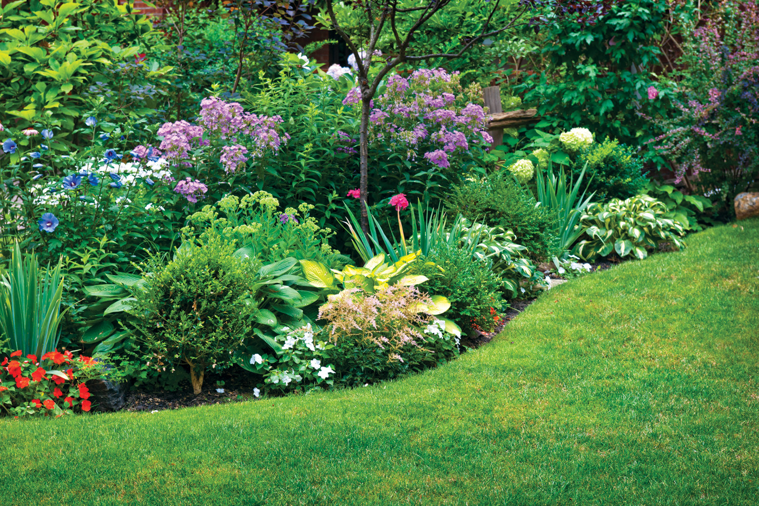 Rain Gardens: A How To Guide for a Healthy Yard