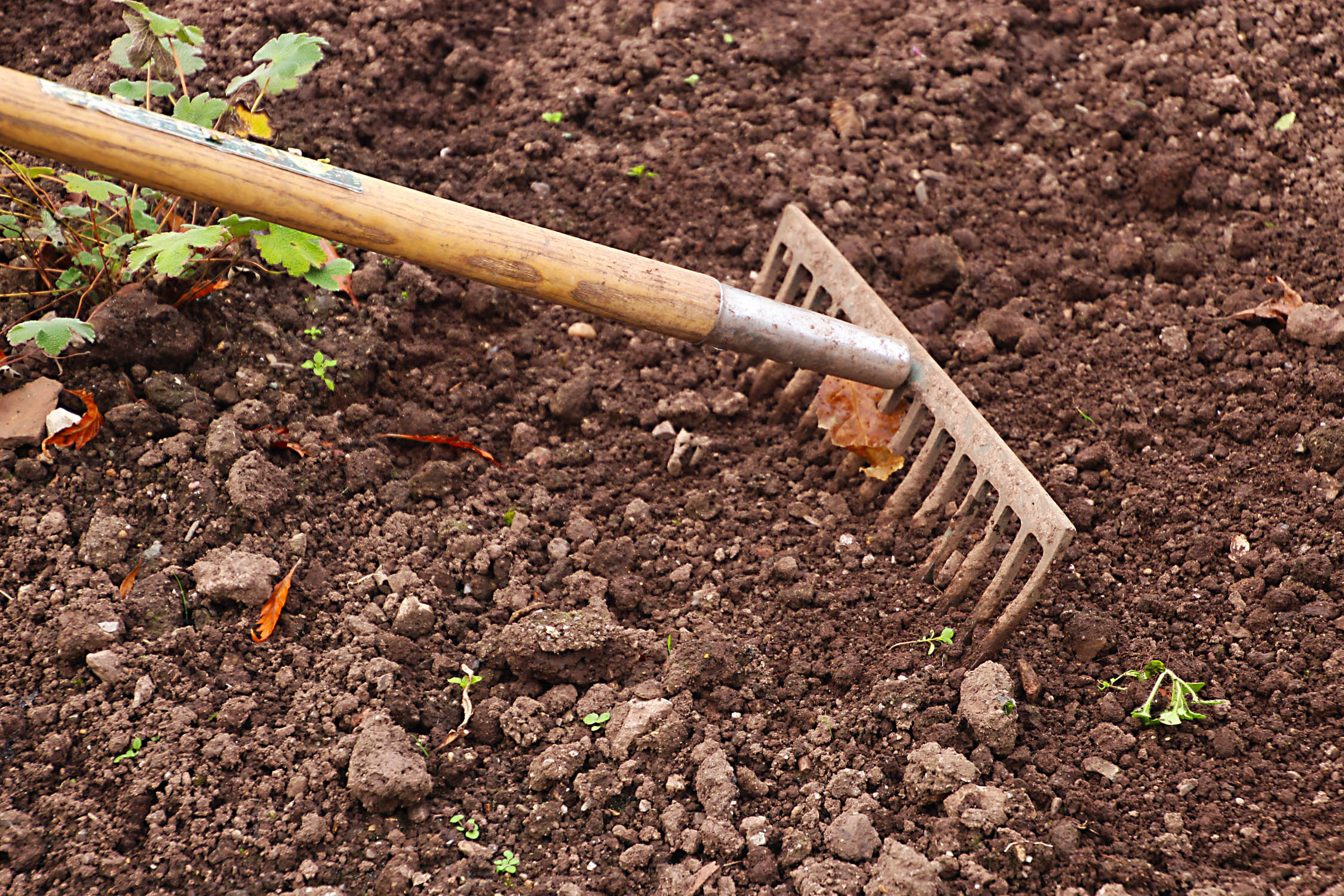 Soil compaction - Gardening - College of Agriculture and